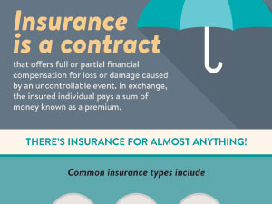 Intro to Insurance Infographic - Click Here